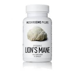 Organic Lion's Mane (Liūto karčiai) N60